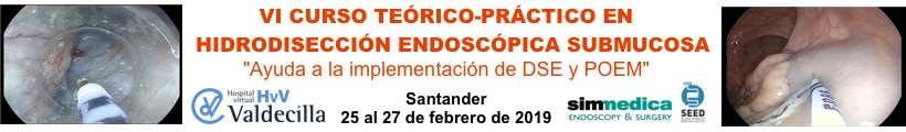 Curso avalado VI Curso Hidrodiseccion Endoscopica Submucosa