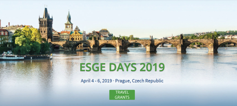 Noticia ESGE DAYS 2019 travell grants dual members SEED ESGE